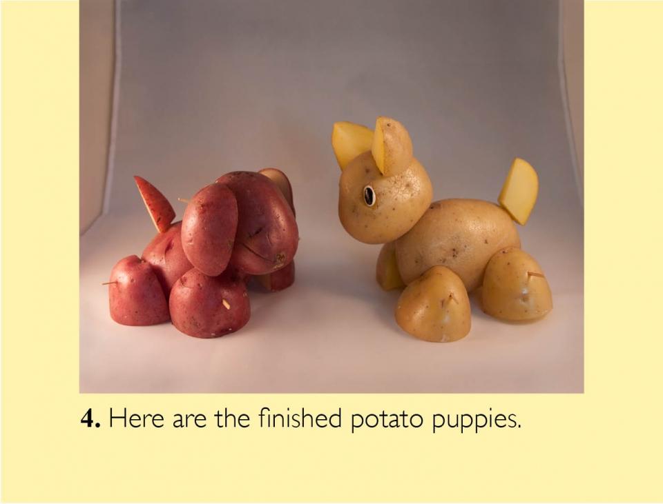 puppy_en05