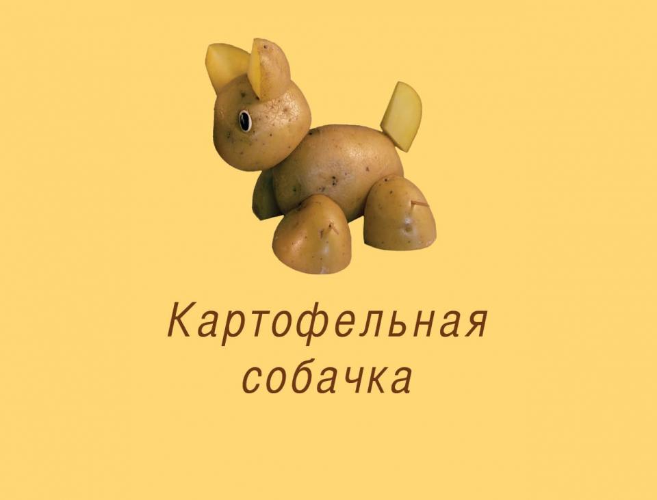 puppy_ru01